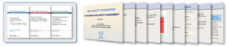 Safety Standards for Design and Safety Assessment